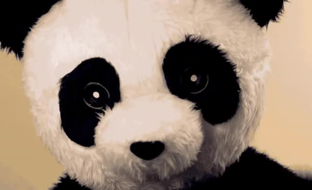 Watch and share Panda GIFs by Reactions on Gfycat