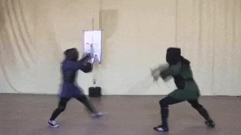 Watch and share Fighting GIFs and Fencing GIFs on Gfycat