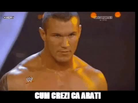 Watch Cum crezi ca arati GIF on Gfycat. Discover more Peter Anguila, Randy Orton GIFs on Gfycat