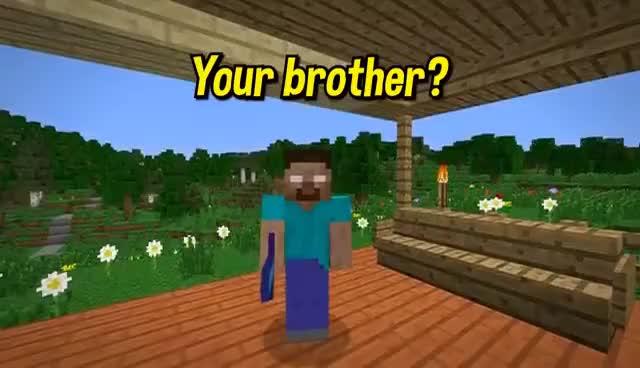 Watch and share If Herobrine Had A Secret Love - Minecraft GIFs on Gfycat