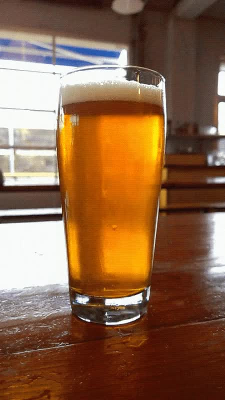 Watch beer GIF on Gfycat. Discover more related GIFs on Gfycat