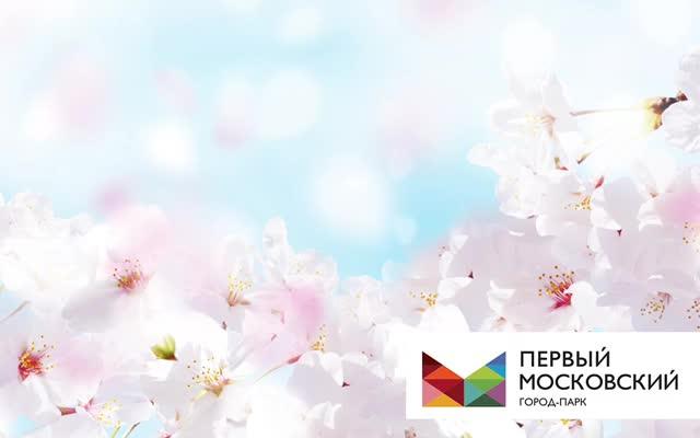 Watch and share ПМ 1мая Vk GIFs on Gfycat