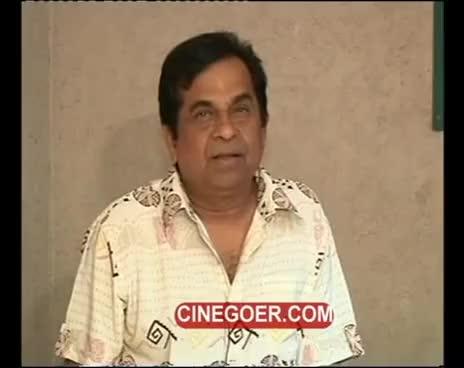 Watch and share Brahmi GIFs and Panja GIFs on Gfycat