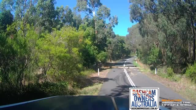 Watch and share Dash Camera GIFs and Dash Cam GIFs by aussieswede2 on Gfycat