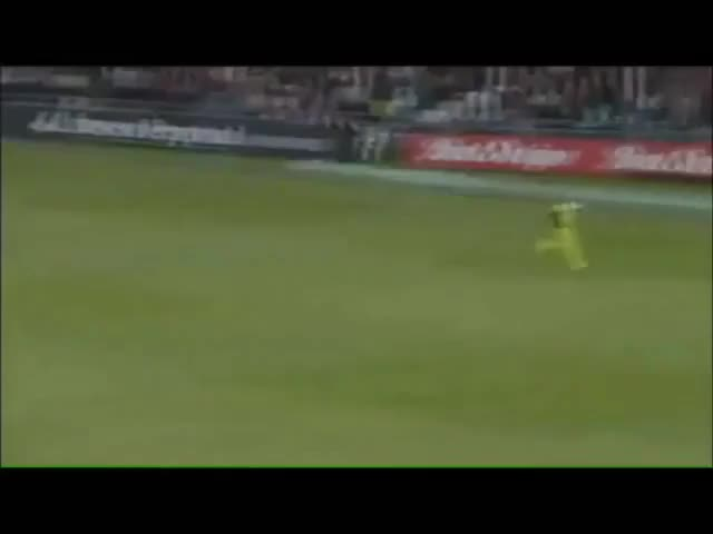 Watch Pakistan Fielding GIF on Gfycat. Discover more related GIFs on Gfycat