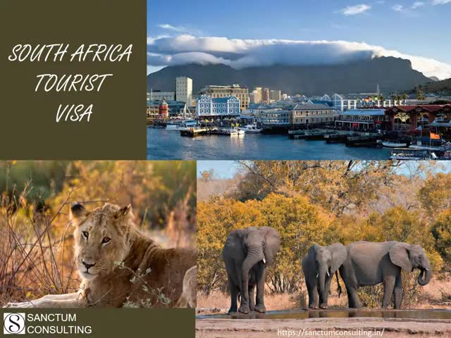 Watch and share South Africa Visa GIFs and Visa Consultants GIFs by Sneha Reddy N on Gfycat