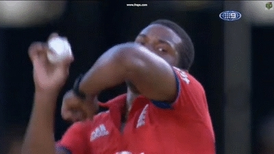 nevertellmetheodds, Chris Jordan amazing caught & bowled to dismiss Warner. (reddit) GIFs