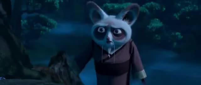 Kung Fu Panda Il Caso Non Esiste Gif Find Make Share Gfycat Gifs