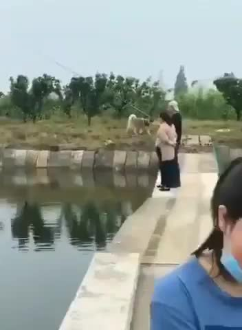 Watch and share A Good Soggy Person GIFs by imadragon on Gfycat