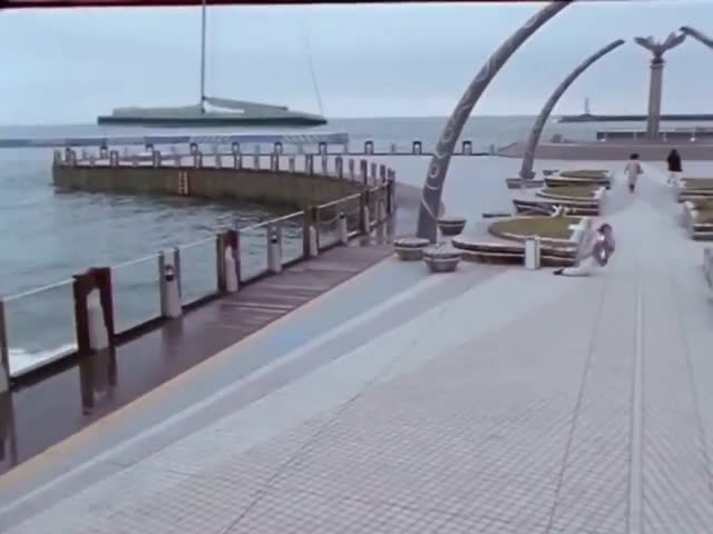 Watch and share Boat GIFs by cariostar on Gfycat