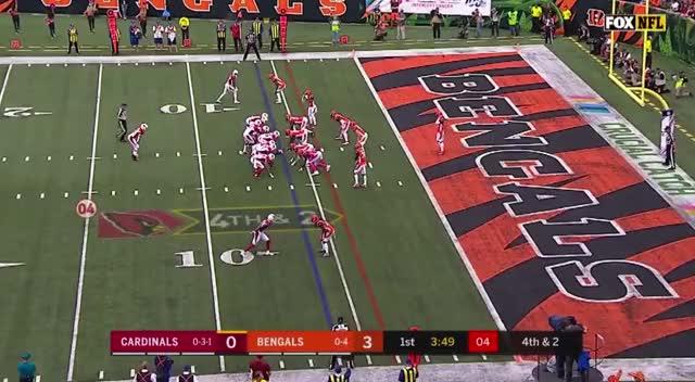Watch and share Cincinnati Bengals GIFs and Arizona Cardinals GIFs by Matt Weston on Gfycat