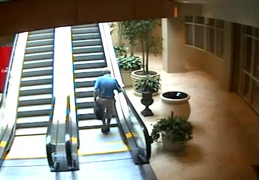 Watch and share Escalator GIFs and Fall GIFs on Gfycat