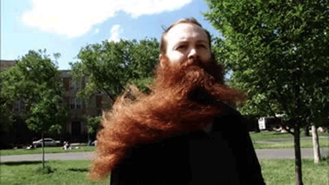 Balmy-beards-and-mad-moustaches.jpg1023x681 GIFs