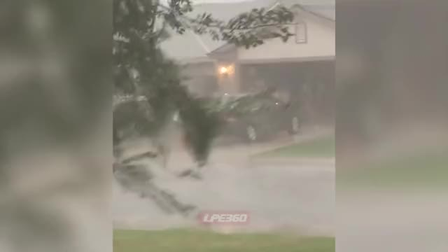 Watch But why? GIF on Gfycat. Discover more crazy, storm, washing car, why GIFs on Gfycat