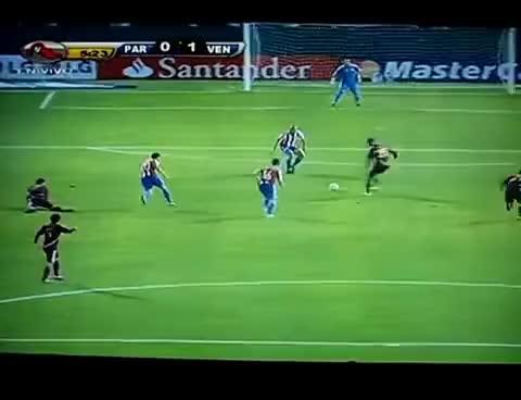Watch and share La Vinotinto GIFs and Copa America GIFs on Gfycat