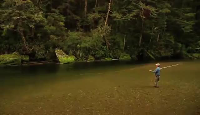 Watch and share Fly Fishing. Fly Casting :: Roll Casts, Curve Casts And More! :: Cast That Catch Fish GIFs on Gfycat