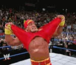 Watch and share HOGAN BROTHER GIFs on Gfycat