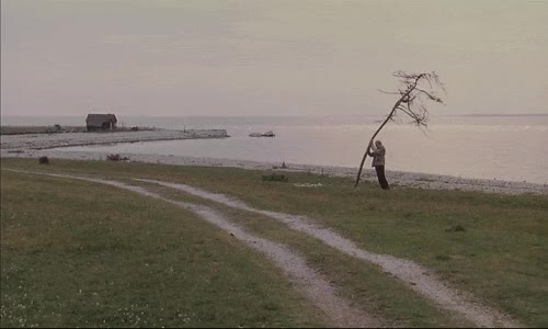 Watch and share Andrei Tarkovsky GIFs on Gfycat
