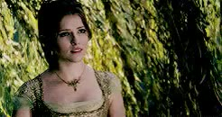 Watch and share Into The Woods GIFs and Pbgreenteam GIFs on Gfycat