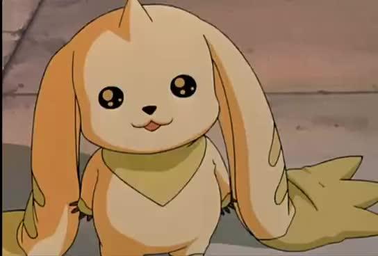 davis, digimon, kari, kiss, movie, tk, willis, yolei, Digimon the movie GIFs