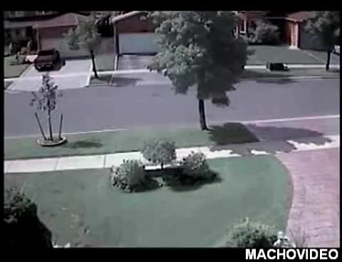 Watch CAR CRASHES INTO TREE!!! GIF on Gfycat. Discover more related GIFs on Gfycat