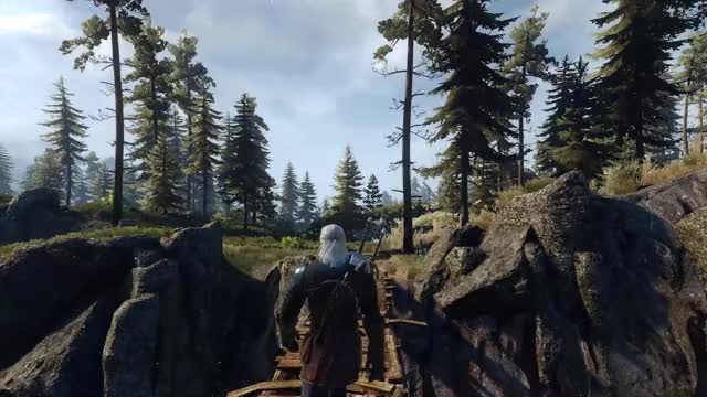Watch and share Witcher GIFs by barrad on Gfycat