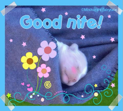 Watch Good nite! GIF on Gfycat. Discover more related GIFs on Gfycat