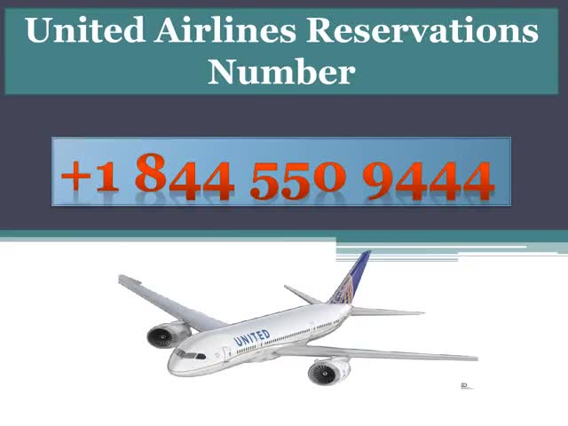 Watch and share United-Airlines-Reservations-Number GIFs on Gfycat