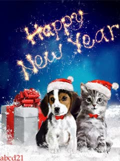 Watch and share Happy New Year With Cat And Dog GIFs on Gfycat