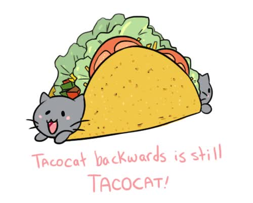 Watch and share Tacos GIFs on Gfycat