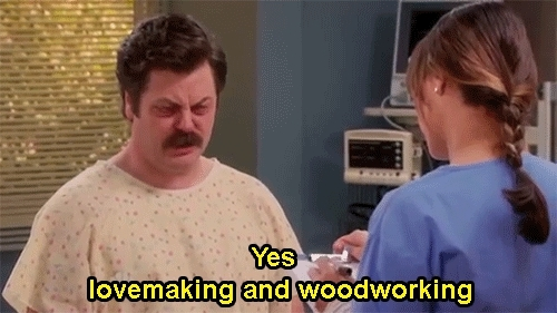 Nick Offerman, and, ann perkins, funny, funny scene, parks, parks and recreation, parks and recreation funny, parks and recreation gif, parks and recreation gifset, recreation, ron swanson, tv show, out-for-awalk-bitch GIFs
