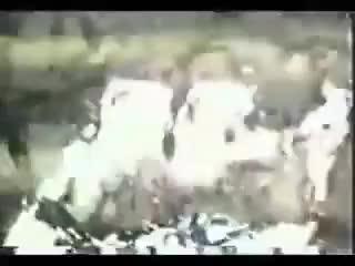 Watch and share Comercial Antigo Do Creme Dental Kolynos - 1987 GIFs by Karan on Gfycat