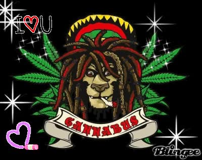 Watch and share Cannabis GIFs on Gfycat