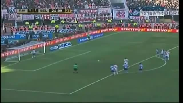 Watch and share Belgrano GIFs and Pavone GIFs on Gfycat