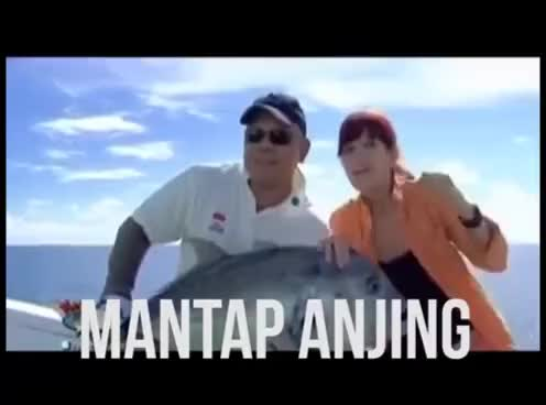Watch and share Mantap Anjing GIFs on Gfycat