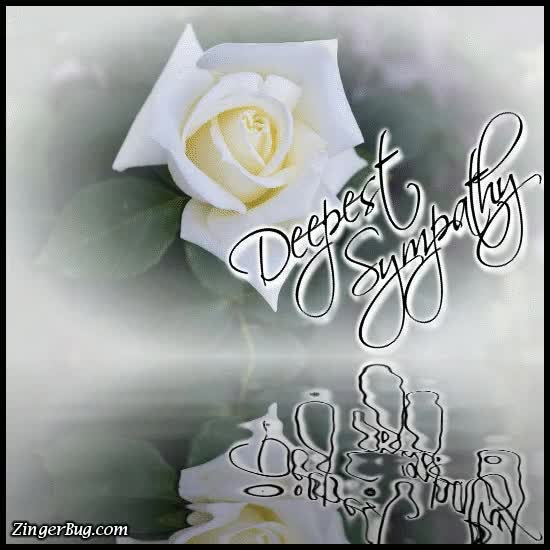 Watch and share Deepest Sympathy Reflecting White Rose GIFs on Gfycat