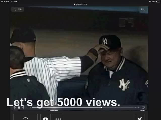 Watch Baseball GIF by NinJa- fiSh. (@daze15) on Gfycat. Discover more related GIFs on Gfycat