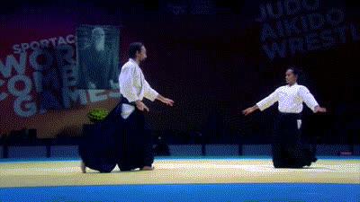 aikido GIFs