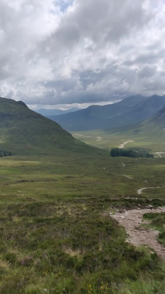Watch and share West Highland GIFs and Scotland GIFs by bananarifle on Gfycat