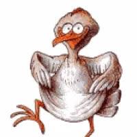 Watch and share Animated Turkey GIFs on Gfycat