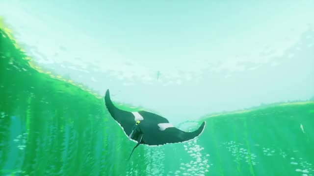 Watch and share Manta Ray GIFs and Abzu GIFs by Kaneda18 on Gfycat
