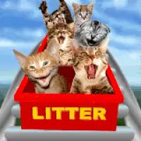 Watch Litter Box GIF on Gfycat. Discover more related GIFs on Gfycat