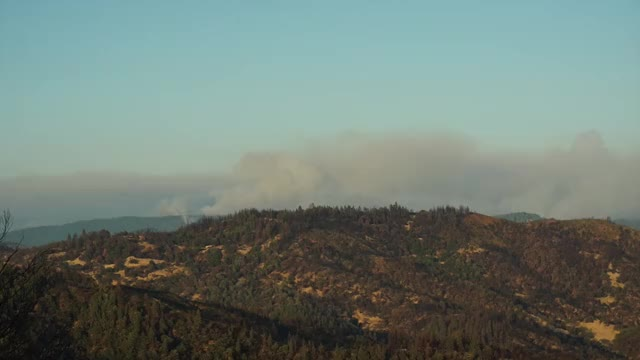 Watch and share Ranch Fire.. GIFs by Max Frey on Gfycat