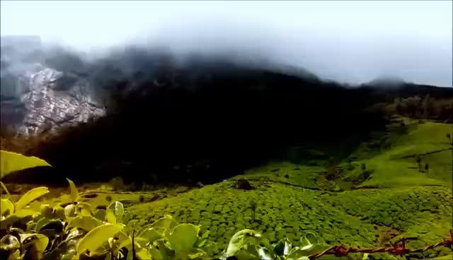 Watch Munnar Kerala | Waterfalls | Tea garden | Dam | Fog | Spice garden GIF on Gfycat. Discover more related GIFs on Gfycat