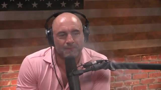 Watch Joe Rogan Experience #1169 - Elon Musk GIF on Gfycat. Discover more comedian, comedy, funny, jokes, mma, tesla, ufc GIFs on Gfycat