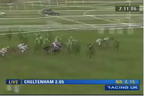 Watch Kayf Aramis winning at the Cheltenham Festival 2009 GIF on Gfycat. Discover more related GIFs on Gfycat