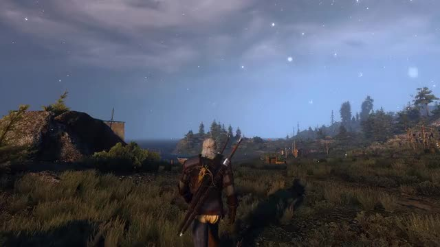 Watch and share Witcher GIFs and Withcer GIFs by barrad on Gfycat
