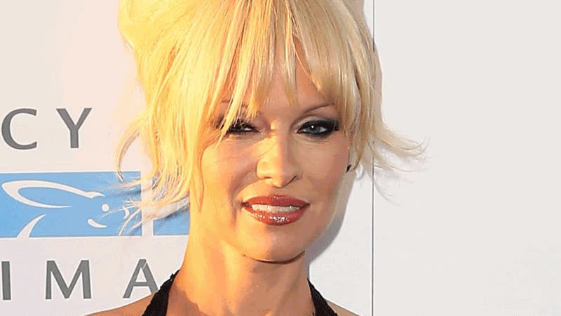 Pamela Anderson Attends The Mercy For Animals 15th Anniversary Gala GIFs