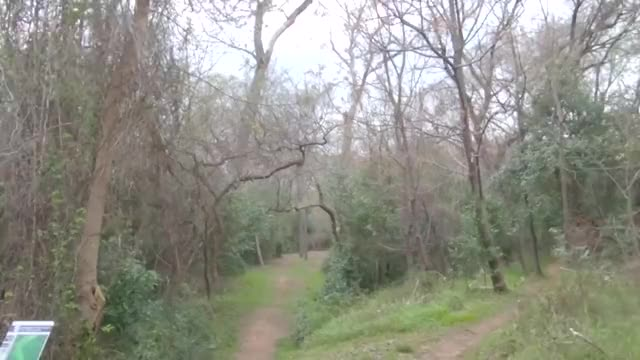 Watch Round One 2019 Waco Annual Charity Open - Front Nine | Koling, Perkins, Oakley, and Earhart GIF by @adamdavenport on Gfycat. Discover more Sports, dgpt, disc golf, disc golf pro tour GIFs on Gfycat