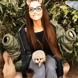 Watch Zoo GIF by Cutey_Boo (@arichella) on Gfycat. Discover more Ariana grande GIFs on Gfycat
